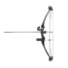 Archery Bow And Arrow M183 Compound Bow Draw Weight 30-40lbs Right Hand China Wholesale